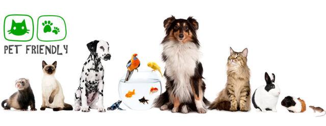"""In crescita il settore degli """"animali domestici"""""""