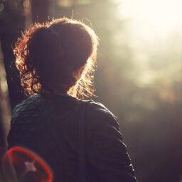 Le 7 attitudini della Mindfulness