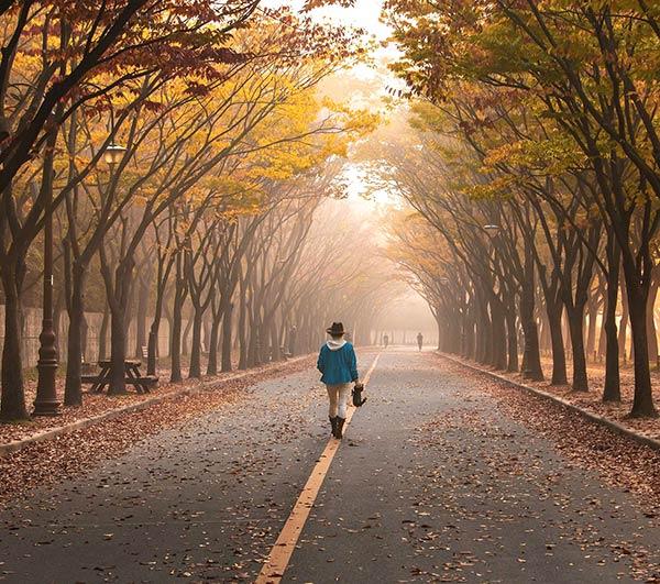 La meditazione camminata mindfulness 2