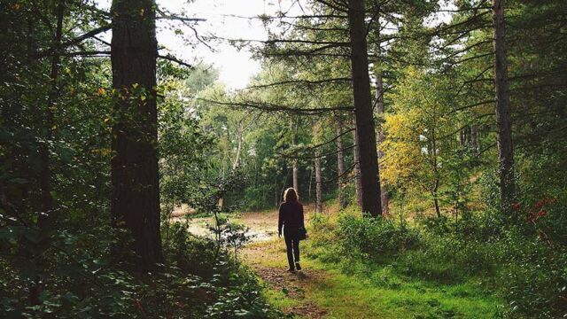 La meditazione camminata mindfulness